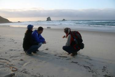 Nature Guides Otago